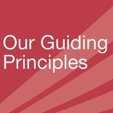 guiding-principles 230x230